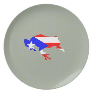 coqui flag plate