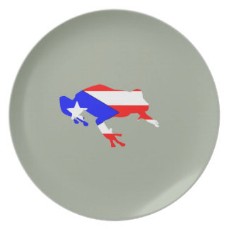 coqui flag plates