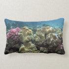 Coral, Agincourt Reef, Great Barrier Reef, Lumbar Cushion