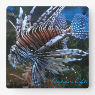 Coral fish ocean life wallclocks