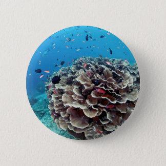 Coral Island 6 Cm Round Badge