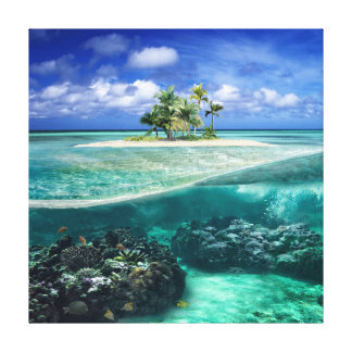 Coral Island Canvas Print