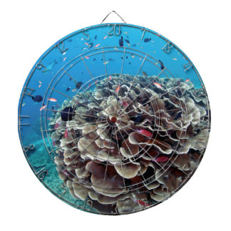 Coral Island Dartboard