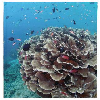 Coral Island Napkin