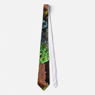 Coral Picture Under The Water Tie