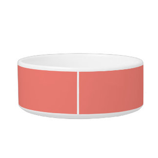 Coral Pink Modern Color Coordinated Bowl