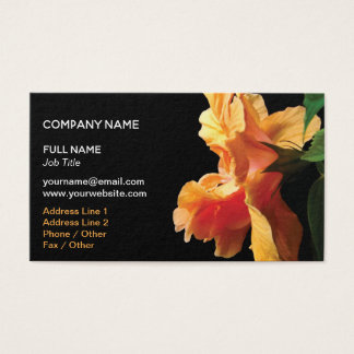 Coral Pink, Peach Orange Hibiscus Flower Business Card