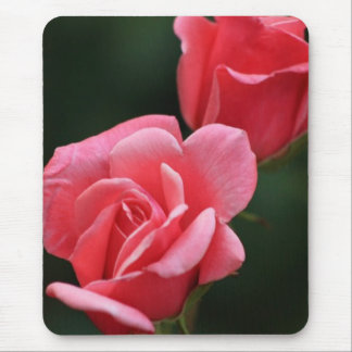 Coral Pink Rose Mouse Pad