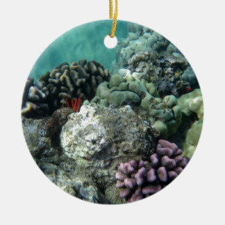 Coral reef ceramic ornament
