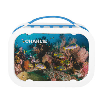 Coral Reef custom name lunch box