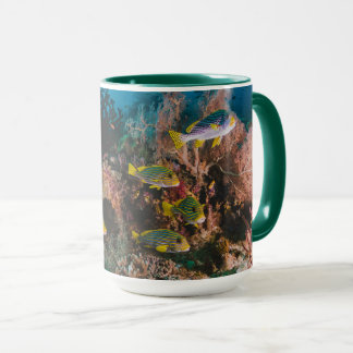 Coral Reef mugs