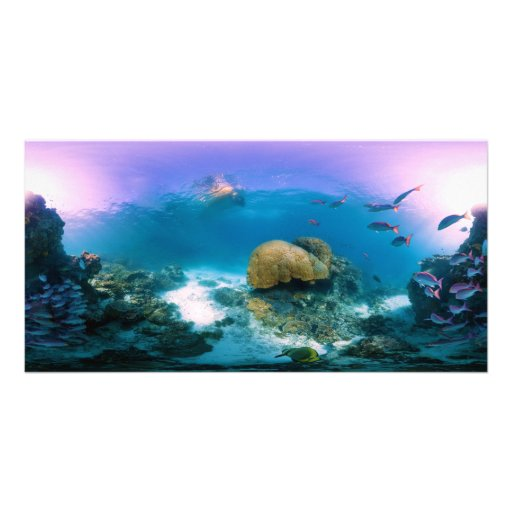 Coral Reef Near Heron Island Personalized Photo Card