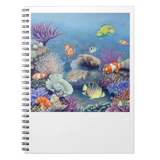 Coral Reef notebook
