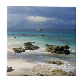 Coral reef paradise tropical island ceramic tile