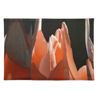 Coral Rose Abstract Place Mats