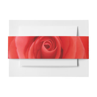 Coral Rose Invitation Belly Band
