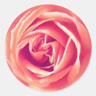 Coral rose print sticker