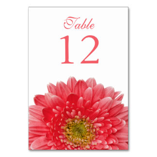 Coral White Gerbera Daisy Wedding Card