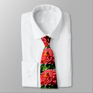 Coral zinnia with bumblebee tie