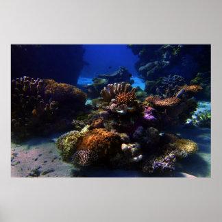 CoralGarden Poster