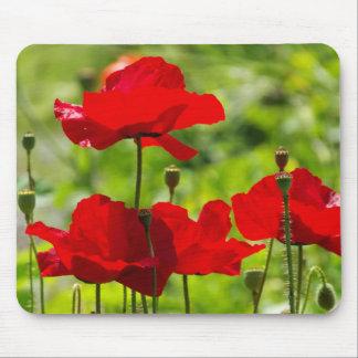 corb poppy mousepads