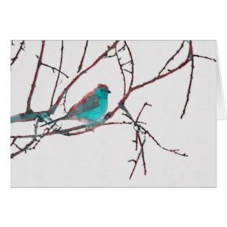 Cordon Bleu Waxbill Card