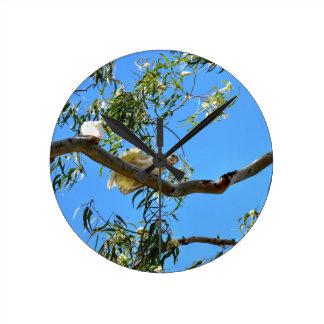 CORELLA BIRD QUEENSLAND AUSTRALIA CLOCKS