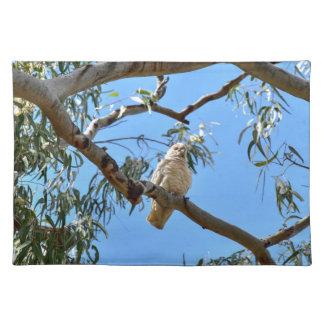 CORELLA BIRD QUEENSLAND AUSTRALIA PLACEMATS