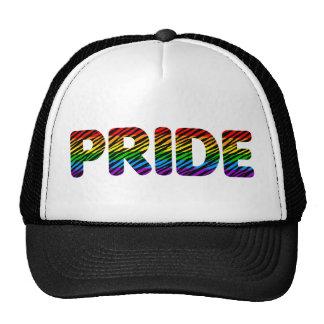 Corey Tiger 80s Retro Pride Rainbow Cap