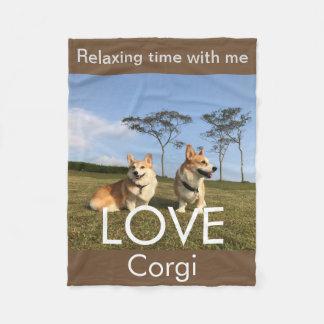 corgi blanket blue sky