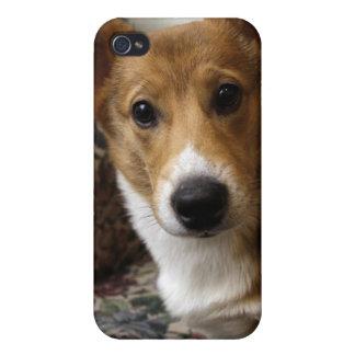 Corgi Dog iPhone Case iPhone 4 Covers