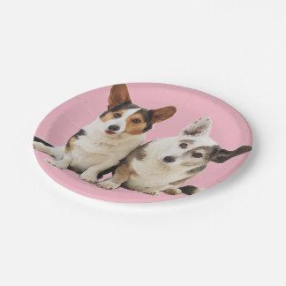 Corgi Duo Paper Plates