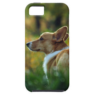 Corgi iPhone 5 Case