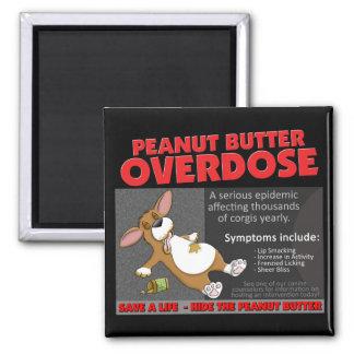 Corgi PB Overdose Magnet
