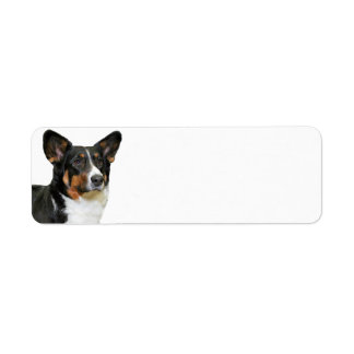 Corgi Return Address Label