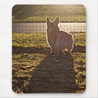 Corgi Sunrise Mouse Pad