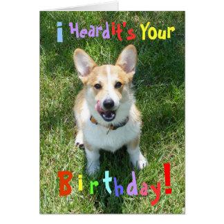 Corgis and Cake Birthday Card