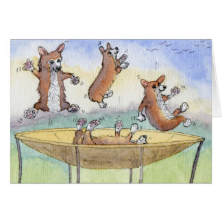 Corgis on a Trampoline Birthday CARD