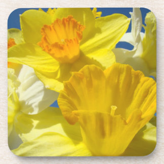 Cork Coaster gifts Spring Yellow Daffodil Flowers