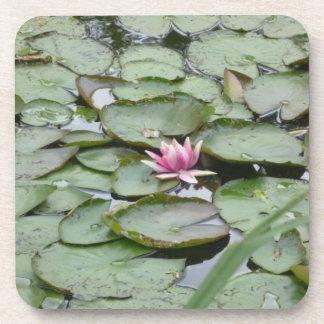 Cork Coasters Set of 6- Monet Garden Lily Pads