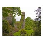 Cork, Ireland. The infamous Blarney Castle 2 Postcards
