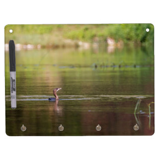 Cormorant bird swimming peacefully dry erase board with key ring holder