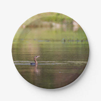 Cormorant bird swimming peacefully paper plate
