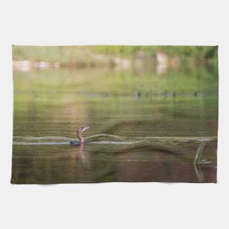 Cormorant bird swimming peacefully tea towel
