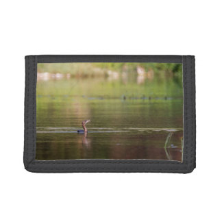 Cormorant bird swimming peacefully trifold wallets