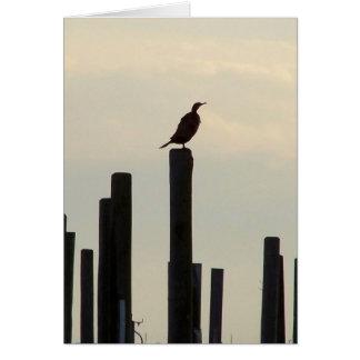 Cormorant/Pilings Greeting Card
