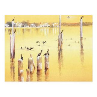 """""""Cormorants"""" Watercolor Beach Birds Postcard"""