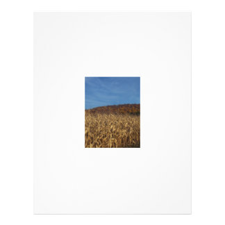 Corn and Blue Sky moon Personalized Flyer