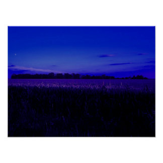 Corn Field at Night Poster