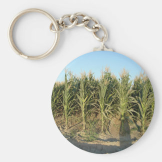 Corn Field Basic Round Button Key Ring